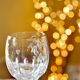 Cheers by Wendy Purdy - Food & Drink Alcohol & Drinks ( glass cheers drink festive celebrate champagne )