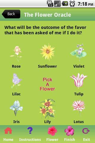 【免費休閒App】The Flower Oracle-APP點子