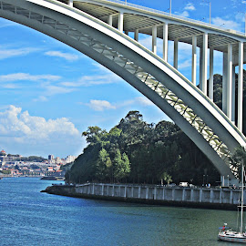 Ponte Arrabida by Lia Ribeiro - Buildings & Architecture Bridges & Suspended Structures