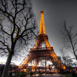 Eiffel Tower @ Night 3 by Ben Hodges - Buildings & Architecture Statues & Monuments ( paris, eiffel tower, colour pop, europe, park, hdr, cloud, trees, france, night, travel )