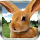 Mountain Rabbit SIM 3D