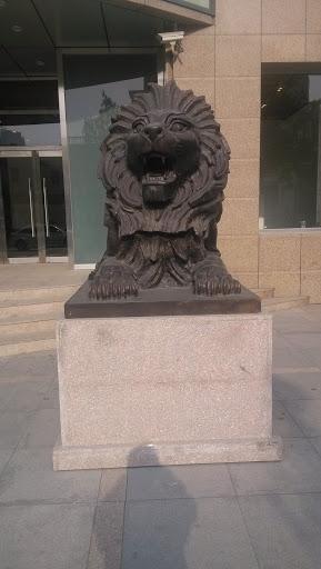 国银大狮子右