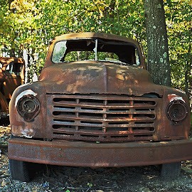 Old But Not Forgotten by Scott Strausser - Novices Only Objects & Still Life ( car, old, vehicle, rusted, rusty, transportation, rust, antique )