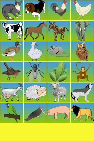 Talking Animals