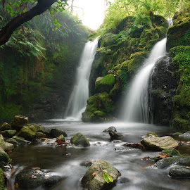 Venford Falls, Dartmoor by Paul Harris - Landscapes Waterscapes ( water, venford falls, waterfall, mossy, long exposure, rocks, dartmoor, venford )