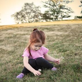 Picking Dandies by Julie Quesnel - Babies & Children Children Candids