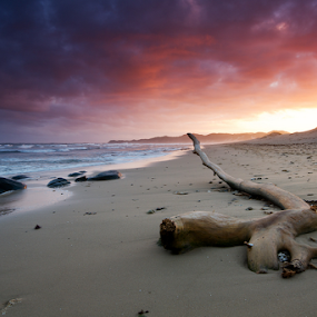 Stranded by Bruce Meaker - Landscapes Sunsets & Sunrises