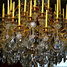 Chandelier by Nic Scott - Artistic Objects Furniture ( chandelier, lighting )