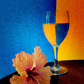 Glass and orange hibiscus  by Janette Ho - Artistic Objects Still Life ( blue, orange. color )