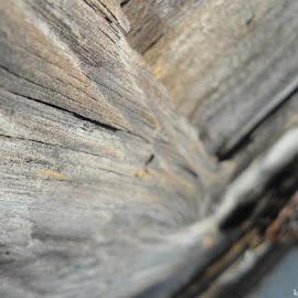 by Katia Magl - Digital Art Things ( doors, streetphotography, old, wooden, wood, street, lock, door,  )