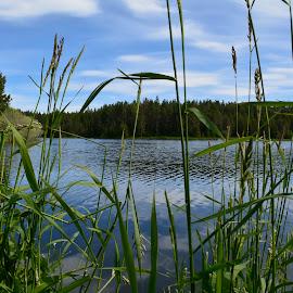 A lake. by Denton Thaves - Nature Up Close Water ( lake )