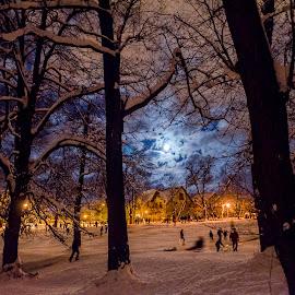 by Alexandru Buturugă - City,  Street & Park  Amusement Parks
