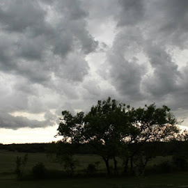 Storm Watch by Joleen Larsen - Landscapes Weather ( scary, exciting, stormy, cold, wet )
