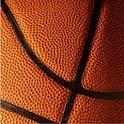 Professional Basketball Stats icon