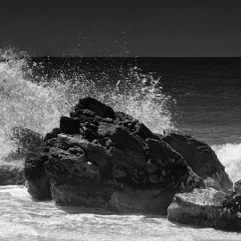 Wet Rocks II by Rodrigo Luft - Landscapes Beaches ( black and white, sea, beach, rocks,  )