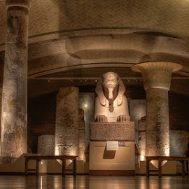 Sphinx of Ramesses II at Temple of Ptah by Kevin Case - Buildings & Architecture Statues & Monuments ( penn museum, ptah, kevin case, ancient, egyptian, sphinx, ramesses ii, canon photography, archeology, kevdia, photography, ancient eqypt )