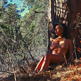 Morning Serenity by Todd Yoder - Nudes & Boudoir Artistic Nude ( nude, female, forest, sunlight, shadows )