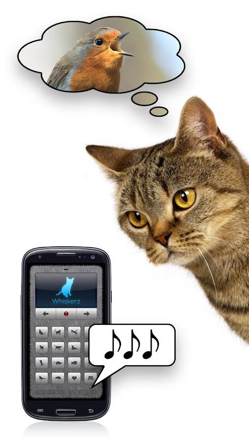 Mensch-Katze-Übersetzer – Screenshot
