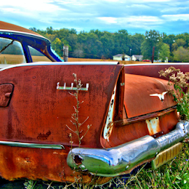 1957 Plymouth Savoy by Steve Edwards - Transportation Automobiles ( automobiles, car, plymouth, transportation, rusty car )