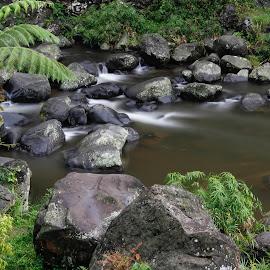 Stone River by Wahyu Pambudi - Nature Up Close Rock & Stone ( indonesia, rock, baturaden, 100d, river )