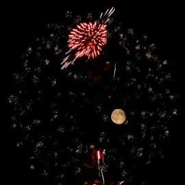 Saturn by Stephen Carr - News & Events Entertainment ( moon, firework, plymouth, fireworks, saturn )