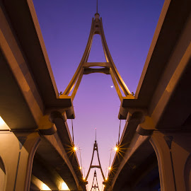Bridge by Kingsly Xavier George - Buildings & Architecture Bridges & Suspended Structures ( night photography, business bay bridge, dubai, blue hour, uae, bridge )