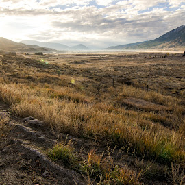 Crested Morning by Ryan Gilchrist - Landscapes Prairies, Meadows & Fields ( crested butte, colorado )