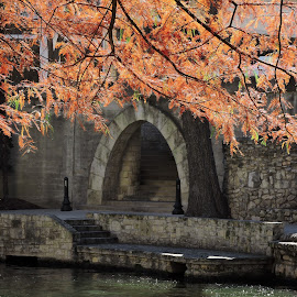 Winter on the River Walk by Lisa Hansen - City,  Street & Park  City Parks ( water, fall colors, autumn leaves, arch, san antonio, steps, leaves, river walk, tree, stairway, autumn, walkway, autumn colors, archway, pond, river )