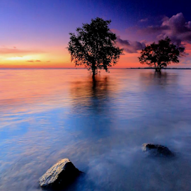 Tanjung Pendam by Benny Irawan - Landscapes Beaches