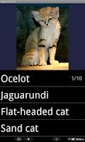 Screenshot of Cat Breeds