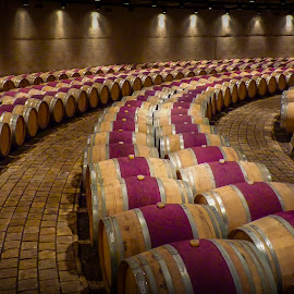 Mendoza Winery by Akar Necati - Buildings & Architecture Other Interior ( cellar, wine barrel, barrel, mendoza, cask, winery )
