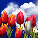 Flowers HD Free Live Wallpaper icon