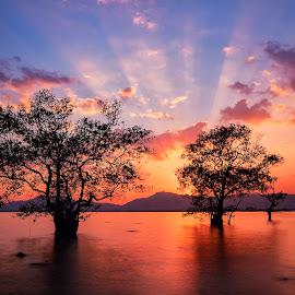 by Charliemagne Unggay - Landscapes Sunsets & Sunrises ( blue, orange. color, #GARYFONGDRAMATICLIGHT, #WTFBOBDAVIS )