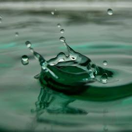 by Marta Raczkowska-Radkiewicz - Abstract Water Drops & Splashes (  )