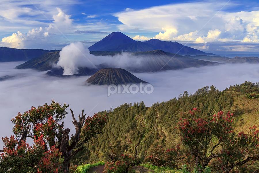 Mount Bromo by Yudik Pradnyana - Landscapes Mountains & Hills ( #landscape #java #clouds #mount #fog,  )