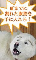 Screenshot of 笑える図書館 〜2ちゃんねるの笑える話、2chコピペ集〜