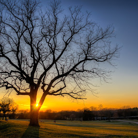 Split Sun by Randell Whitworth - Landscapes Sunsets & Sunrises ( park, nc, sunset, concord, frank liske )