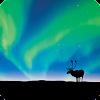 Aurora Borealis LWP APK