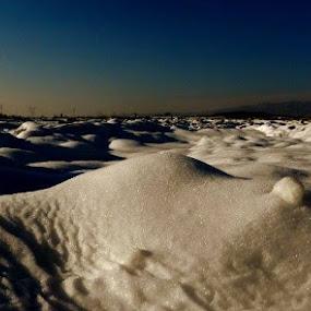 Winter Field by Nat Bolfan-Stosic - Landscapes Prairies, Meadows & Fields ( field, idila, winter, cold, snow )