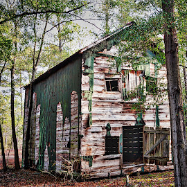 Bladen Barn by Lou Plummer - Buildings & Architecture Decaying & Abandoned