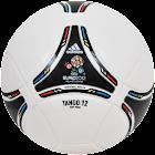 Euro 2012 Live Wallpaper icon