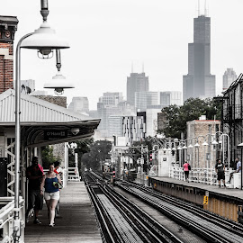 Chicago by Sjoerd Storchart - City,  Street & Park  Skylines