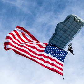 Special Forces Parachute Team by Lou Plummer - News & Events US Events ( army, skydiver, ft. bragg, black daggers, fayetteville )