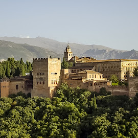 Alhambra, Granada, Spain by Steve Griffiths - Buildings & Architecture Public & Historical ( mountain, alhambra, skylines )