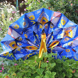 Origami using Food Packaging by Krys Fenz - Novices Only Objects & Still Life ( peacock paper folding, cheezels, origami, origami using food packaging., origami peacock )