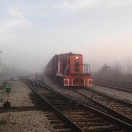 by Steve Konig - Transportation Trains