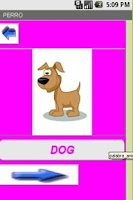 Screenshot of Animales en Ingles