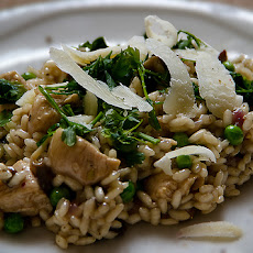 Faranaci (Risotto with Chicken and Mushrooms)
