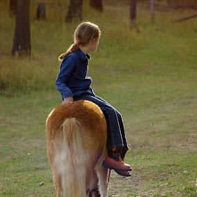 by Giselle Pierce - Babies & Children Children Candids ( miniature horse, field, child, little girl, grass, horse, children, demin, boots, kid )