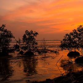 Penang at dawn by Andrew Ooi - City,  Street & Park  City Parks ( sky, dawn, sea, trees, sunrise )